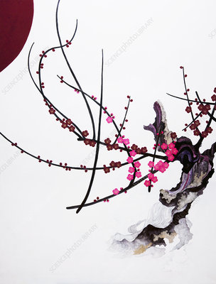 Pink blossom growing from gnarled branch, illustration