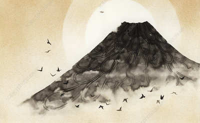 Birds flying over misty volcano mountain, illustration