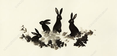 Rabbits sitting in grass together, illustration