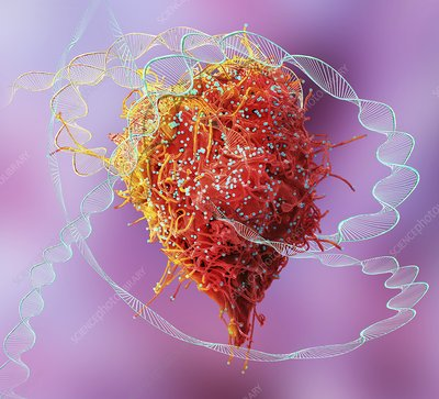 HIV infection and DNA, conceptual composite image