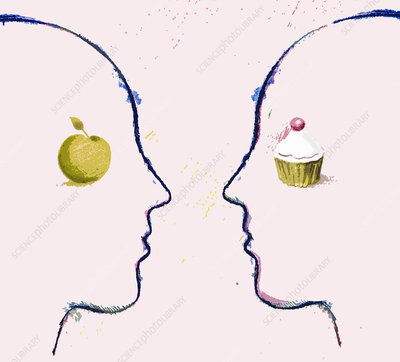 Apple and cupcake on contrasting faces, illustration