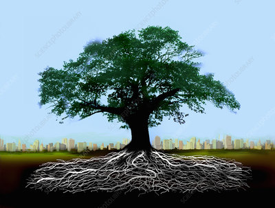 Tree with roots below ground with skyline, illustration