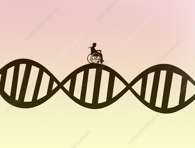 Man in wheelchair on DNA double helix, illustration