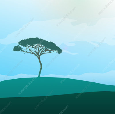Tree in tranquil field, illustration