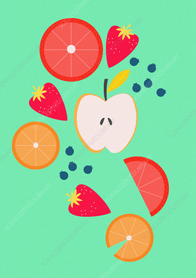 Slices of fresh fruit, illustration