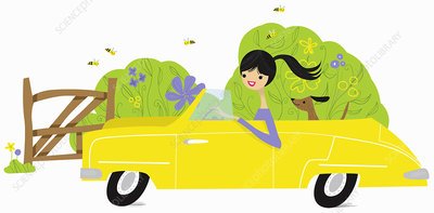 Carefree woman and dog in yellow convertible, illustration