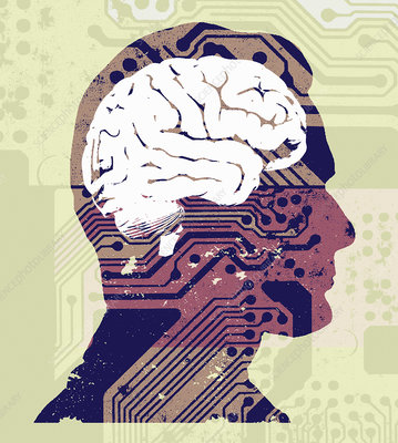 Man's brain connected to circuit board, illustration