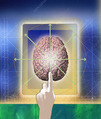 Finger pointing to brain on digital tablet, illustration