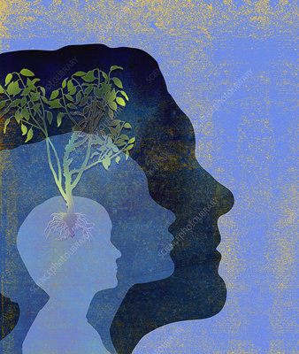 Tree growing from silhouettes of heads, illustration