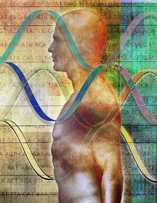 Human body with helix pattern, illustration