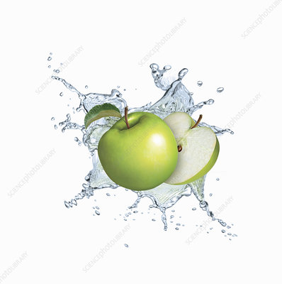 Water splashing around green apples, illustration