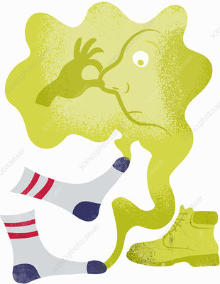 Face holding nose in fumes from smelly feet, illustration