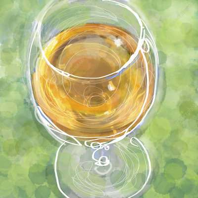 Close up of white wine in wine glass, illustration