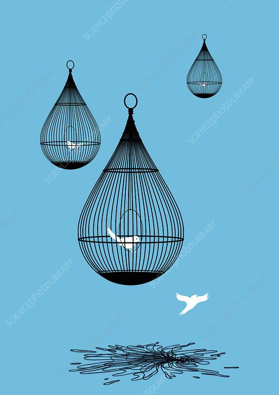 Freed bird flying away from broken birdcage, illustration