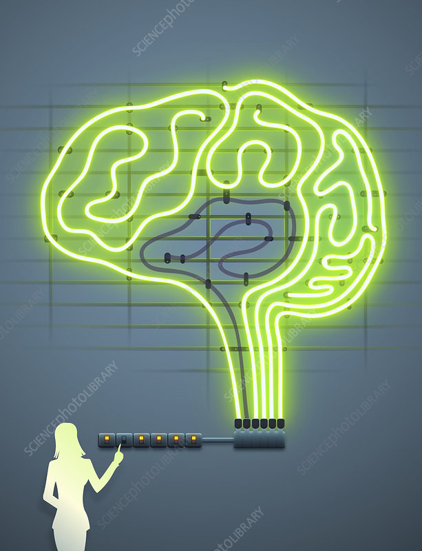 Woman turning on switches to up electric brain, illustration
