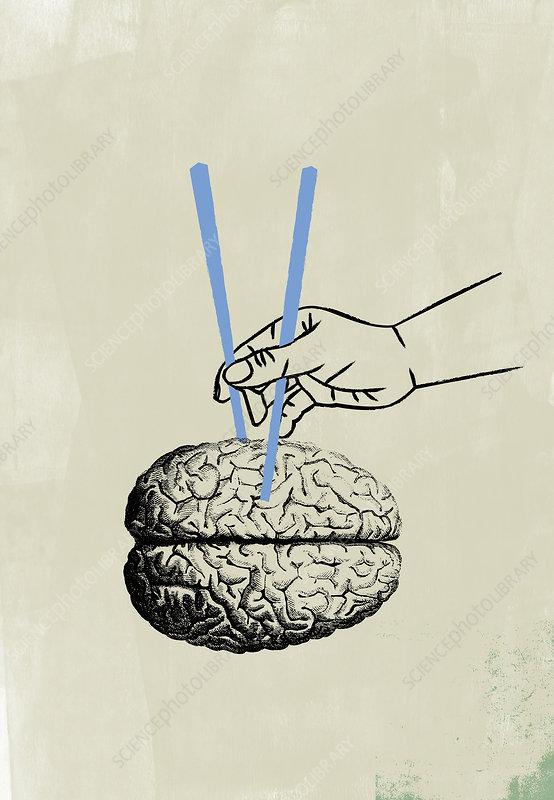 Hand using chopsticks to pick up human brain, illustration