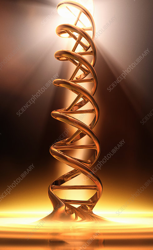 DNA double helix in spotlight, illustration