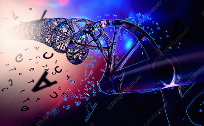 Double helix with DNA coding, illustration