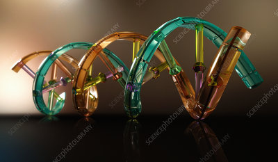 Plastic double helix model with DNA coding, illustration