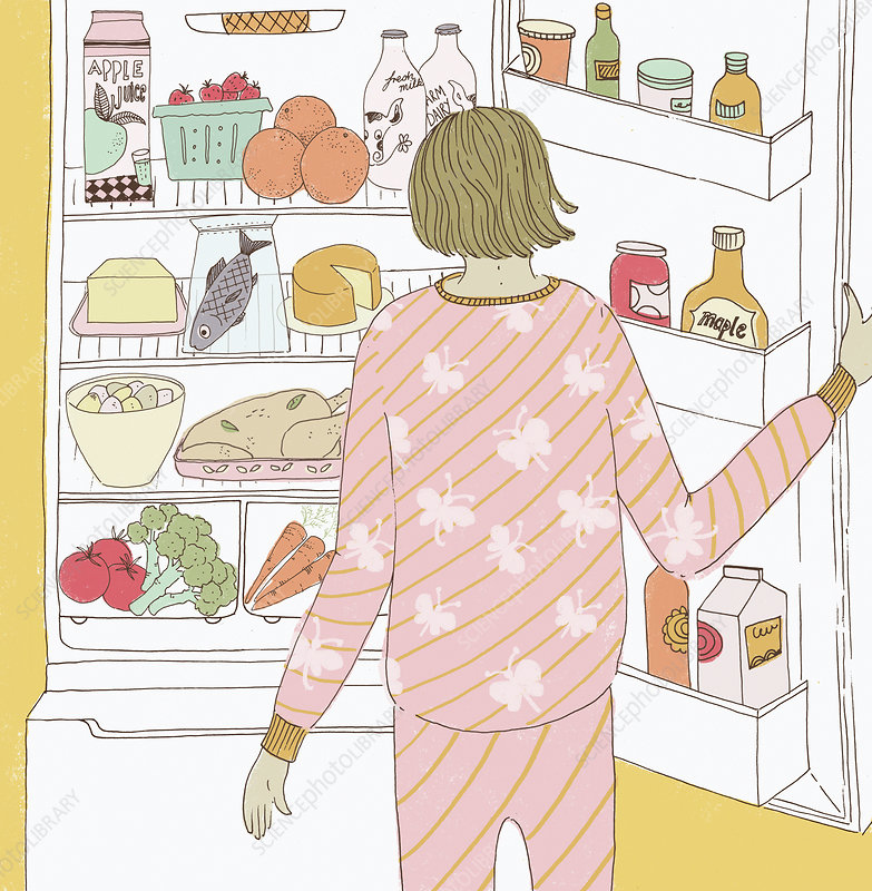 Woman looking in the fridge, illustration