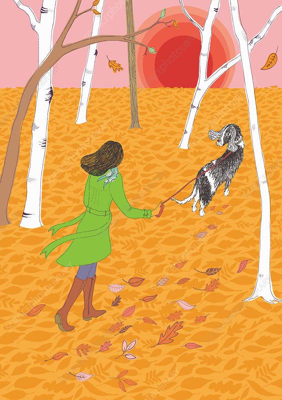 Woman walking dog in woods, illustration
