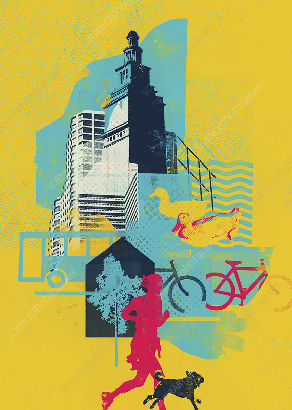 Collage of healthy lifestyle and green city, illustration