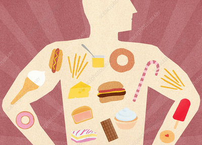 Variety of unhealthy food inside of man's body, illustration