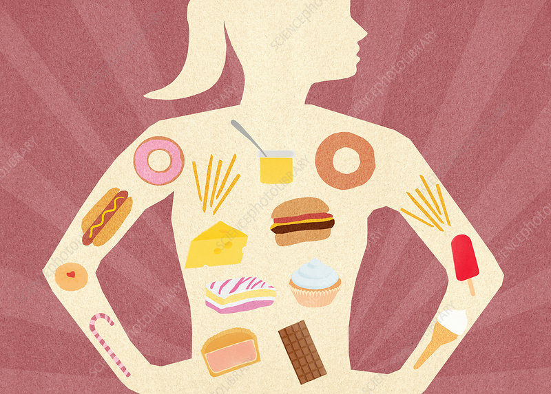 Unhealthy food inside woman's body, illustration
