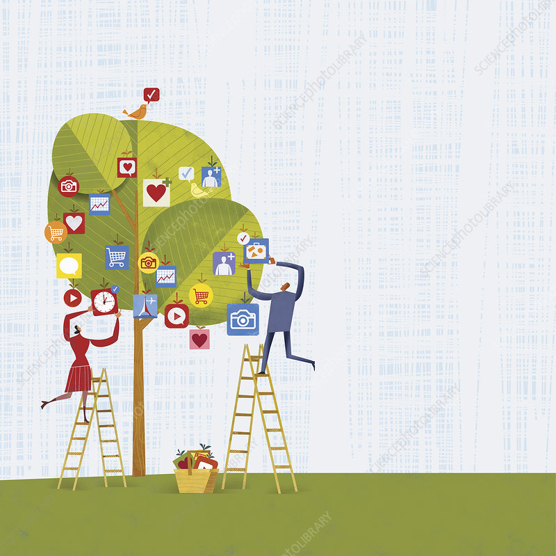 Man and woman picking mobile apps from tree, illustration