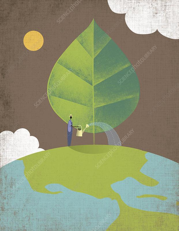 Man watering tree growing on top of globe, illustration