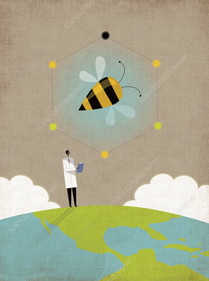 Scientist researching bees on top of the globe, illustration