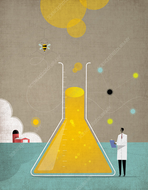 Scientist researching bees and agriculture, illustration