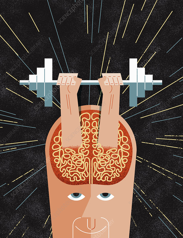 Hands lifting barbell from man's brain, illustration
