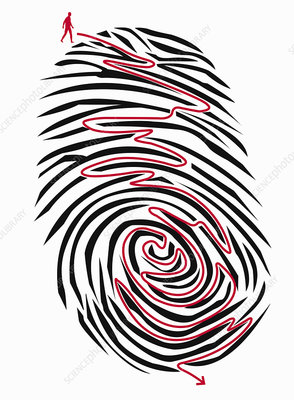 Man finding path through maze on fingerprint, illustration