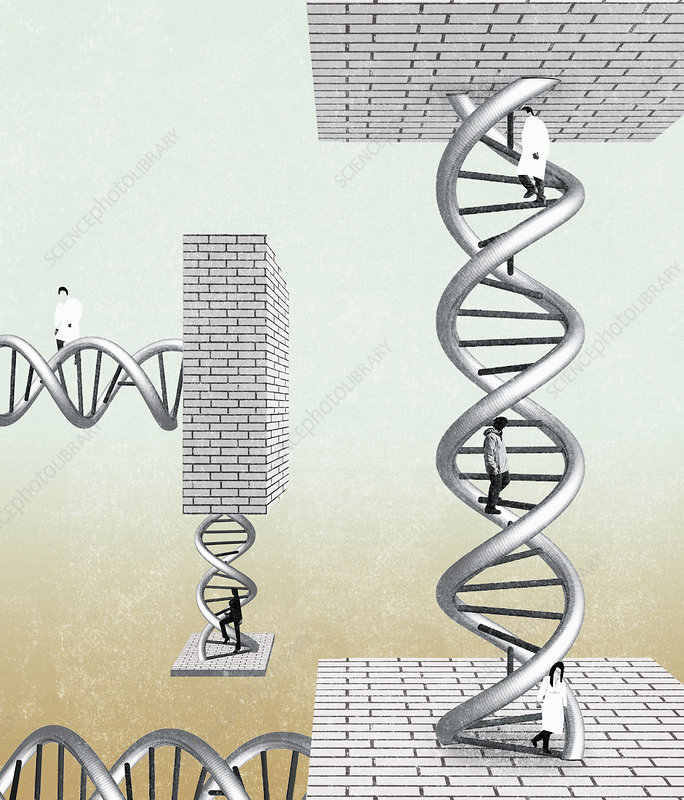 People climbing DNA double helix, illustration