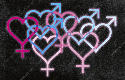 Overlapping blue and pink gender symbol hearts, illustration