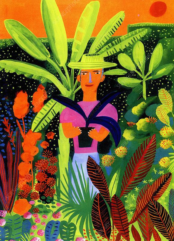 Gardener holding potted plant, illustration