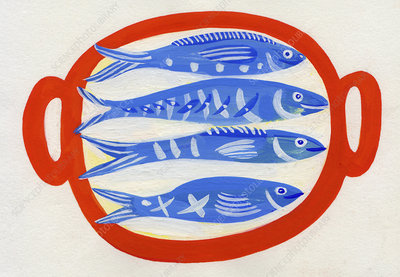 Four different fish on tray, illustration