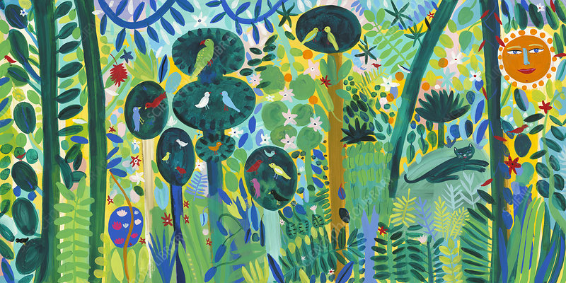 Lush multicoloured jungle, illustration