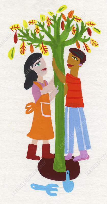 Young couple planting tree together, illustration