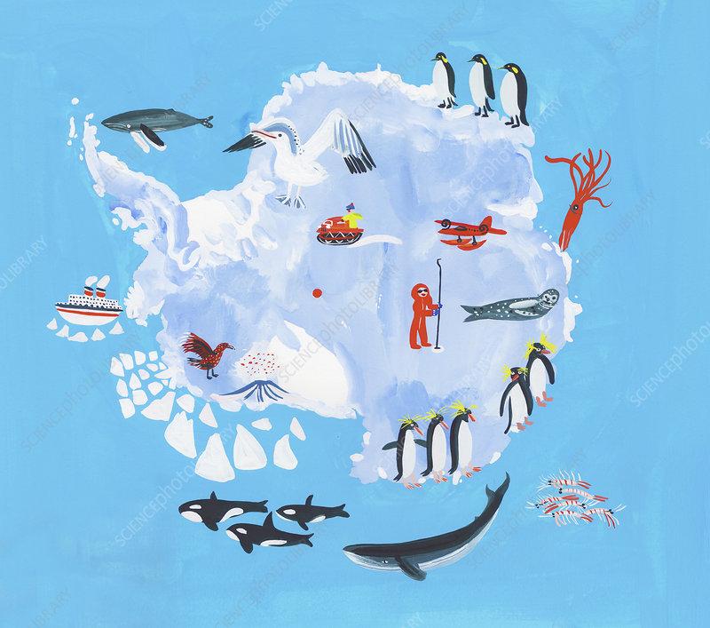 Map of Antarctica, illustration