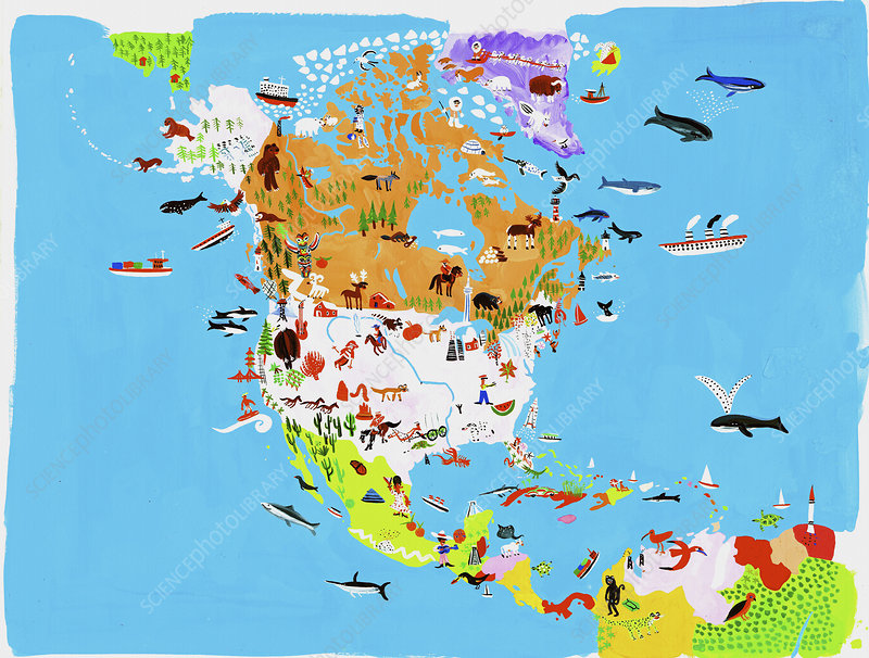 Map of culture and wildlife, illustration