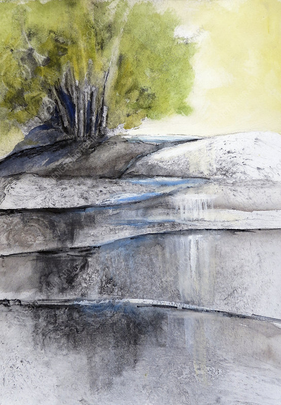 Trees beside river waterfall, illustration