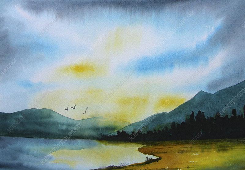 Birds flying over lake, illustration