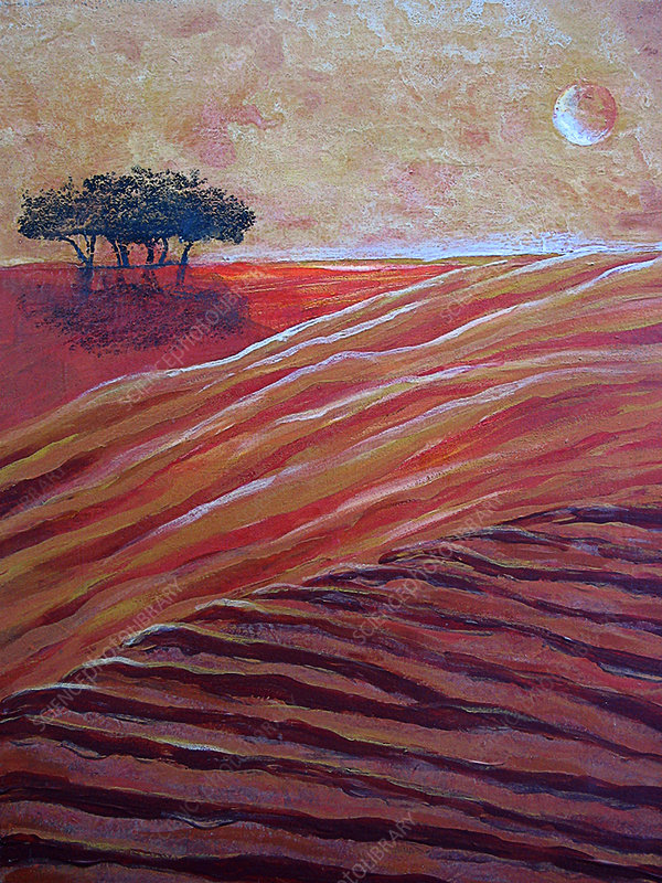Ploughed fields in moonlight, illustration