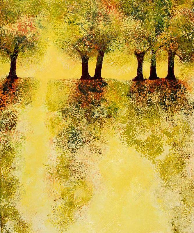 Autumn trees in yellow landscape, illustration