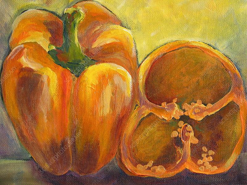 Still life of orange bell peppers, illustration