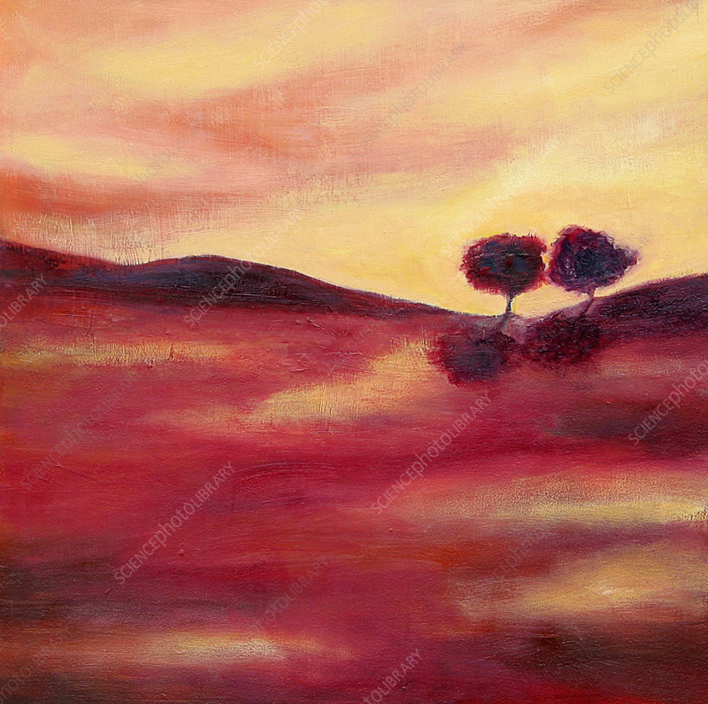 Trees in tranquil pink landscape, illustration