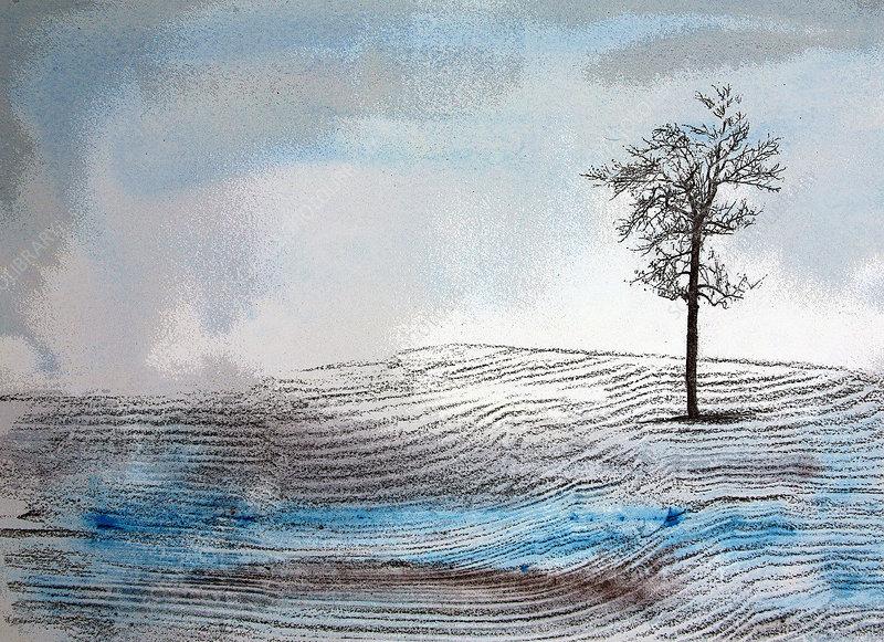 Bare tree in snowy field in winter, illustration
