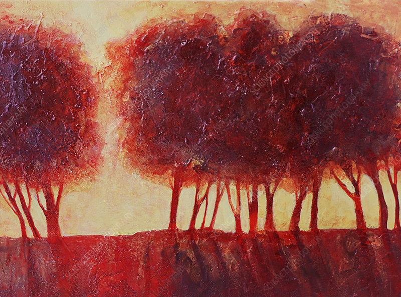 Back lit red trees, illustration
